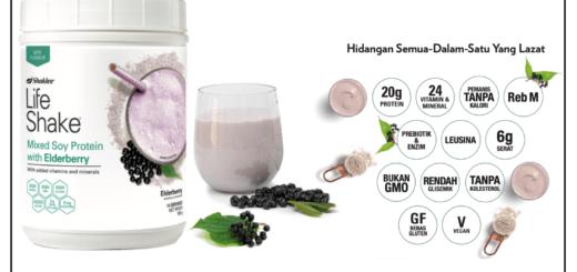 pengedar shaklee chemor, life shake elderberry, baizura bahar, vitally vitamin