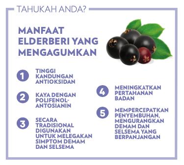 Life Shake Elderberry Shaklee, pengedar shaklee chemor, baizura bahar